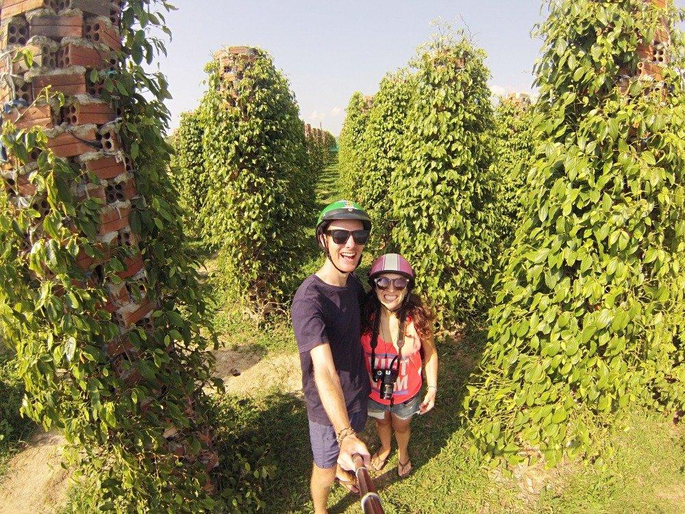 pepper in Kampot