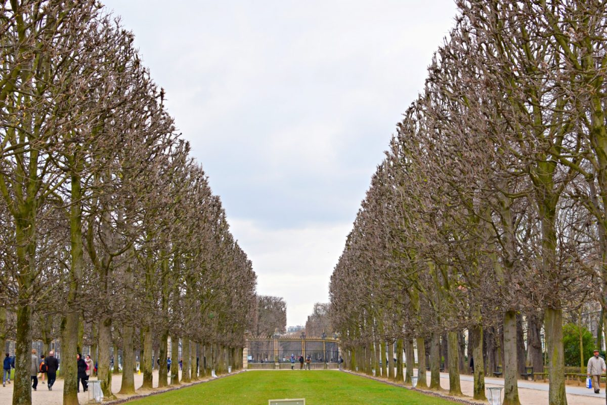 luxembourg gardens in spring
