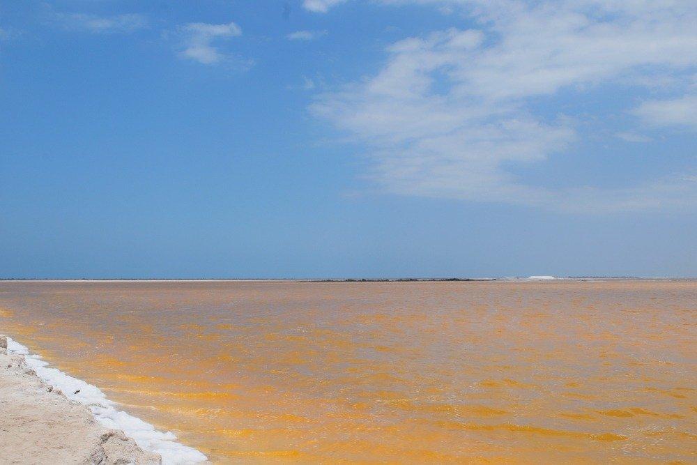 pink lakes mexico rio lagartos