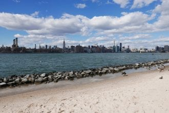 cool things to do in brooklyn