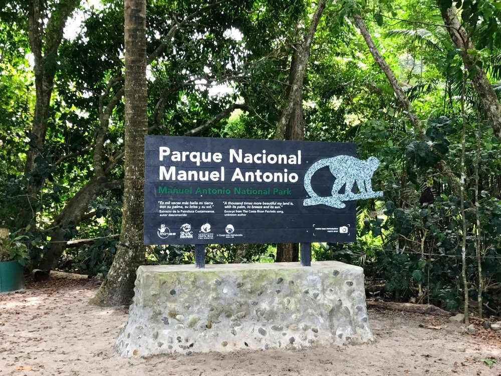 Sloth Spotting in Manuel Antonio National Park