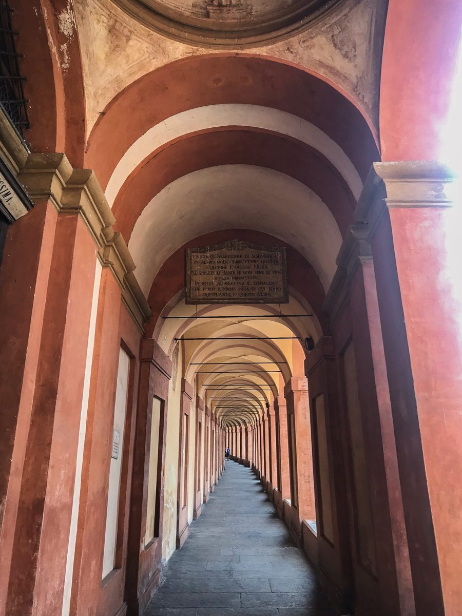 what to do in bologna