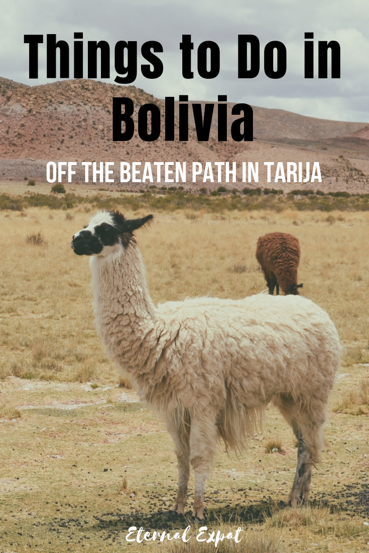 Things to do in Bolivia - head to tarija bolivia to get off the beaten path, visit the inca trail, explore salt flats in bolivia and eat amazing food in bolivia!