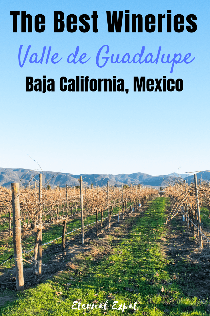 the best wineries in valle de guadalupe, if you want to enjoy the baja california wineries, look no further than the stunning hills of the Guadalupe Valley. There are amazing wineries and vineyards for a fraction of the price of the Napa Valley!