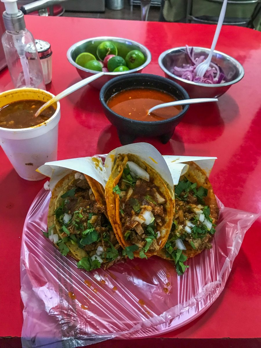 what to do in tijuana, eat birria tacos