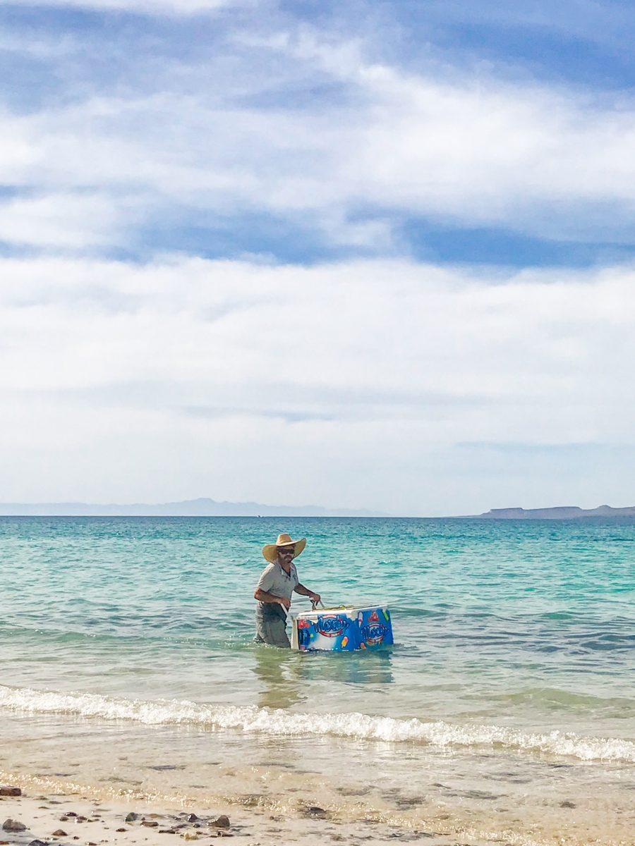 best beaches in la paz mexico