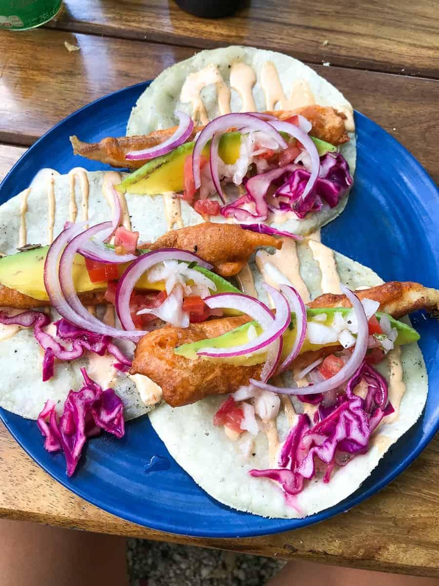 delicious fish tacos in bacalar lagoon