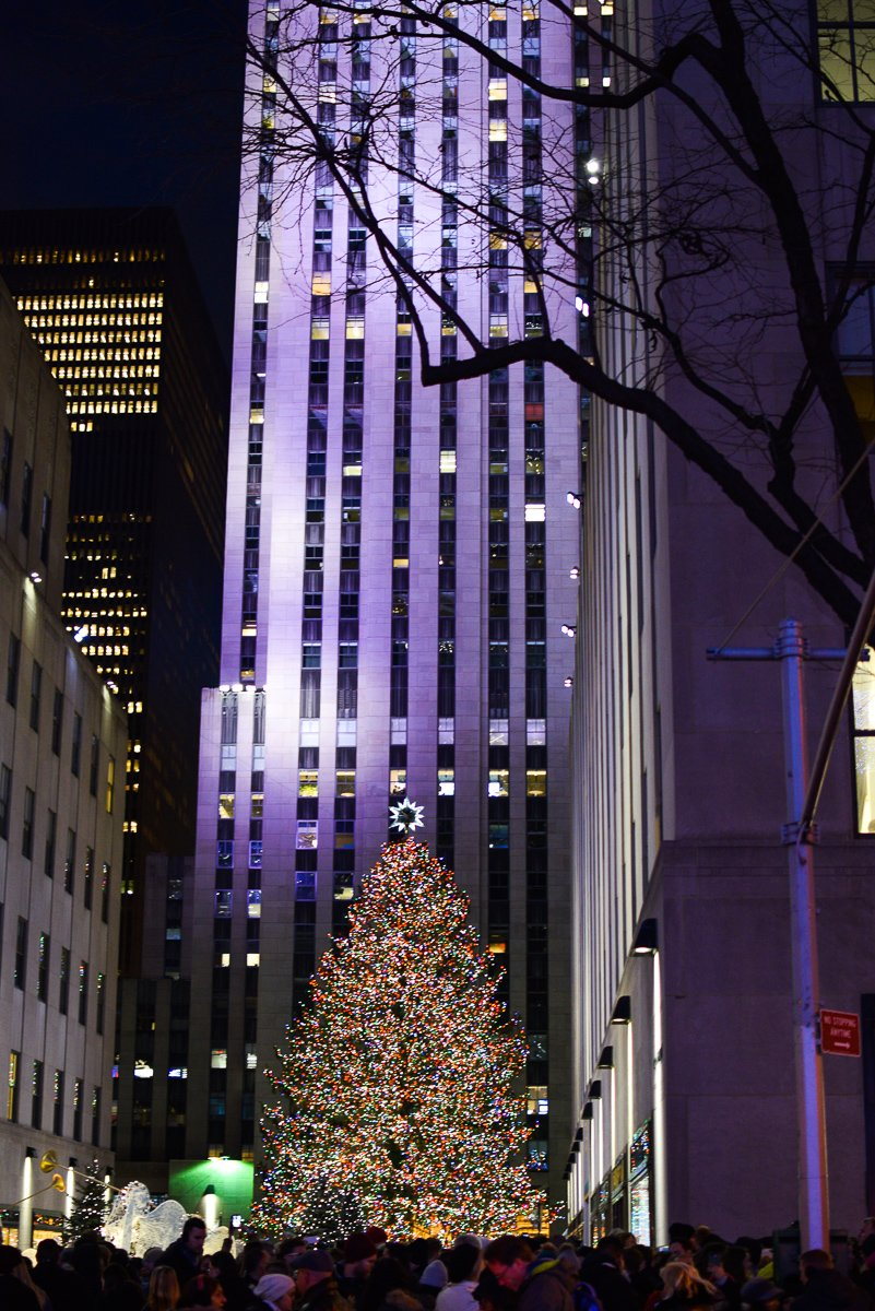 rockafeller christmas tree in new york city