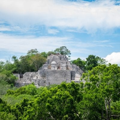 Calakmul Biosphere Reserve: What You Need to Know