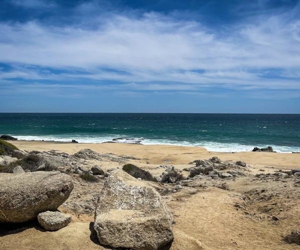 10 Awesome Things to Do in San Jose del Cabo