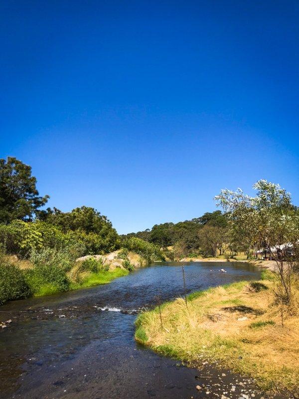 river running through a grassy area in bosque de la primavera in Guadalajara