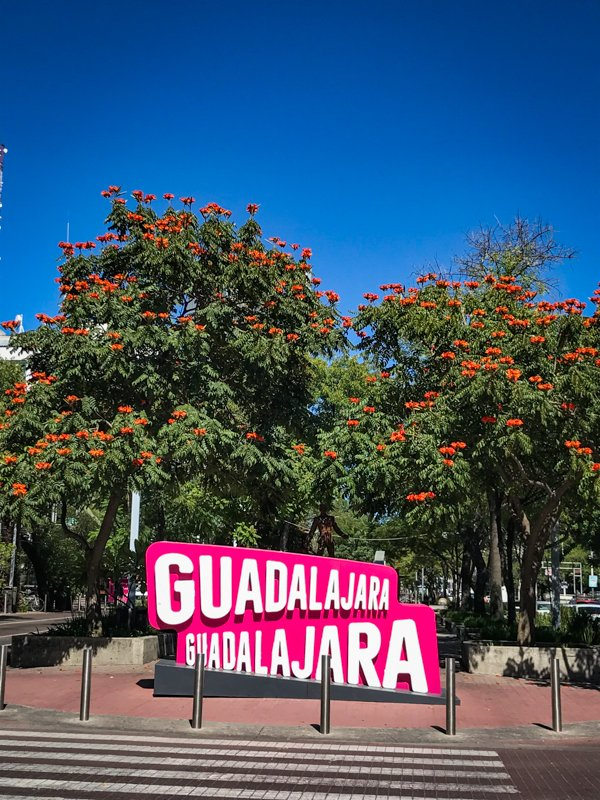 Guadalajara sign with trees and blue sky