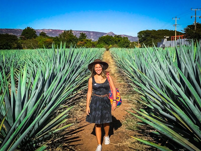 woman walking in agave field on the best day trip in guadalajara, tequila