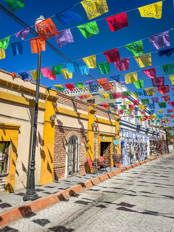 todos santos street with colorful flags