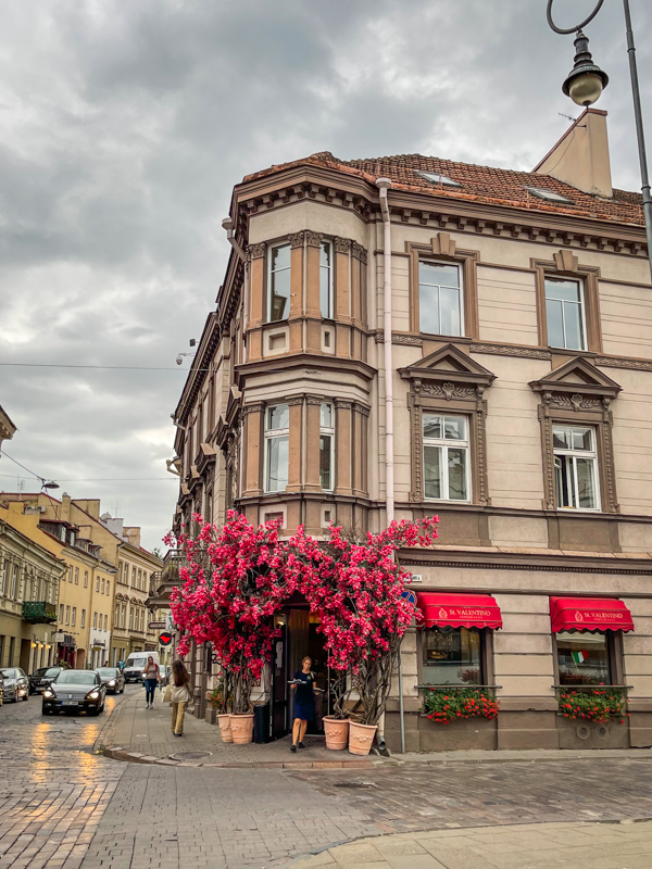 brown building with pink flowers in streets of vilnius