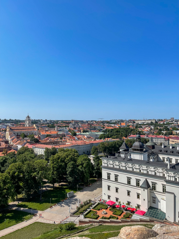 view of Vilnius and the palace
